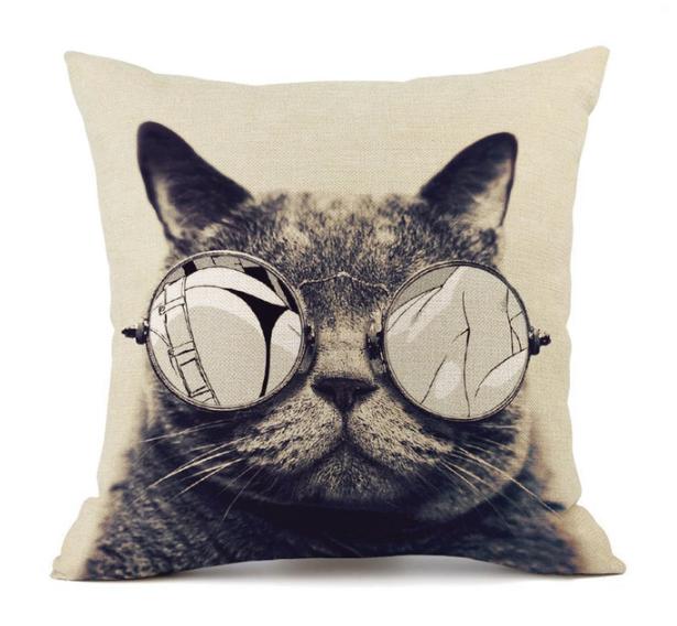 Szemüveges cica